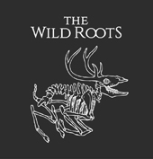 The Wild Roots – Tales